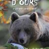 histoires_d_ours