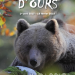 histoires_d_ours